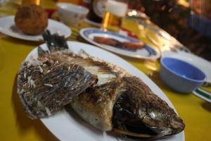 panin fish