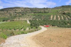 Heraklion Wine Country
