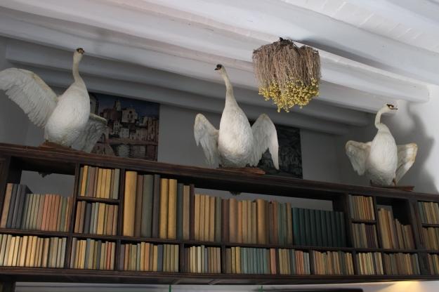 Salvador Dali's library
