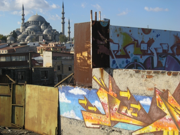 roofs of Istanbul