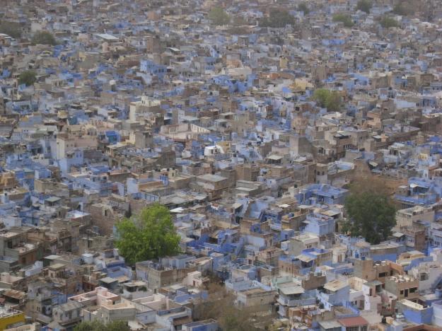 Jodhpur: the blue city