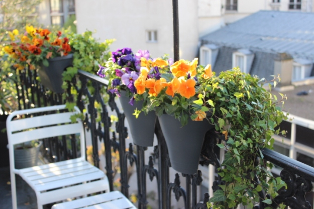 Parisian balcony with flowers