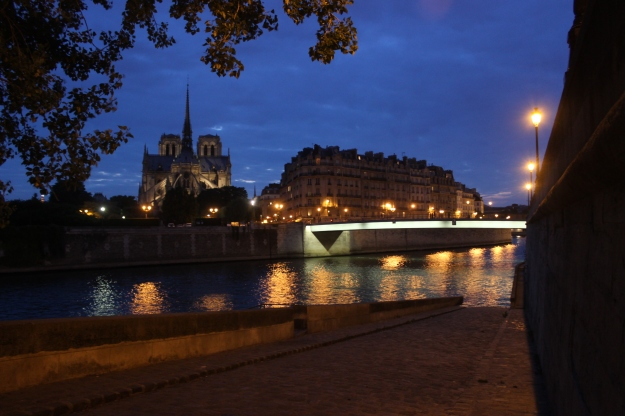 Paris and Notre Dame at night