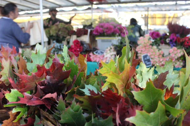 The Bastille Market, open on Thursdays and Sundays, gives a lot of joy to us.